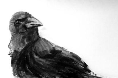 Raven nopeus dating